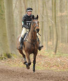 Equestrian sport,galloping horse Stock Images