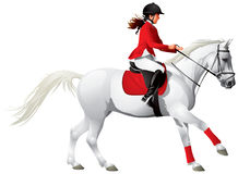 Equestrian sport horse and girl Stock Photo