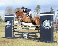 Equestrian sport: horse jumping Stock Photos