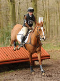 Equestrian sport: horse jumping Stock Photos