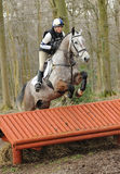 Equestrian sport: horse jumping Stock Photo