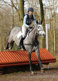Equestrian sport: horse jumping Royalty Free Stock Image