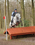 Equestrian sport: horse jumping Royalty Free Stock Photos