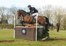 Equestrian sport: horse jumping Stock Images