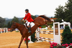 Equestrian sport Royalty Free Stock Image