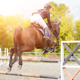 Equestrian sport image. Show jumping competition. Equestrian sport background. Young sportswoman jumping over a hurdle on Show jumping competition Stock Photos