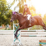 Equestrian sport image. Show jumping competition. Equestrian sport background. Young sportswoman taking her course on Show jumping competition Royalty Free Stock Image