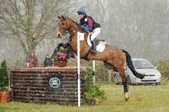 Equestrian sport: koński doskakiwanie obraz stock