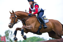 Equestrian sport. Woman eventer on horse negotiati Stock Images