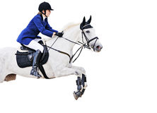 Equestrian sport: young girl in jumping show. (isolated on white Stock Images