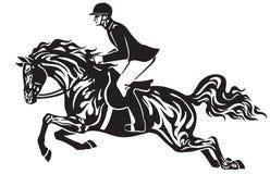 Equestrian sporta przedstawienia doskakiwanie Jeździec na koniu Zdjęcie Royalty Free