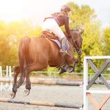 Equestrian sporta wizerunek Przedstawienia doskakiwania rywalizacja Zdjęcia Stock