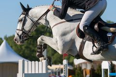 Equestrian Sports Royalty Free Stock Images
