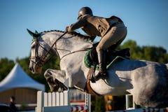Equestrian sporty Obrazy Stock