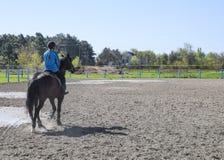 Equestrian sporty z nastolatkami Konia klub Dziewczyna jedzie a Obraz Stock