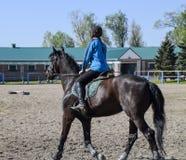 Equestrian sporty z nastolatkami Konia klub Dziewczyna jedzie a Fotografia Stock