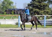 Equestrian sporty z nastolatkami Konia klub Dziewczyna jedzie konia Obrazy Royalty Free
