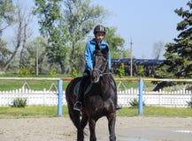 Equestrian sporty z nastolatkami Konia klub Dziewczyna jedzie konia Fotografia Royalty Free