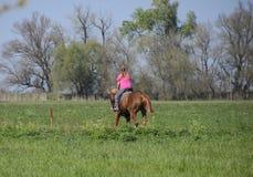 Equestrian sporty z nastolatkami Konia klub Dziewczyna jedzie konia Zdjęcia Royalty Free