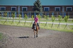 Equestrian sporty z nastolatkami Konia klub Dziewczyna jedzie konia Obraz Royalty Free