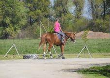 Equestrian sporty z nastolatkami Konia klub Dziewczyna jedzie konia Zdjęcie Stock