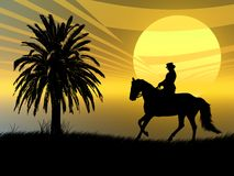Equestrian in the sunset. Woman riding with her horse in the sunset Stock Image