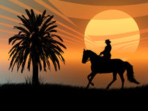 Equestrian in the sunset Stock Photography
