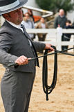 Equestrian test of morphology to pure Spanish horses Stock Photo