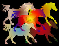 Equestrian themed background image Royalty Free Stock Images