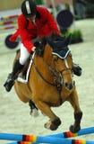 equestrian vi Obrazy Stock