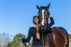 Horse Woman Rear Training Affection Outdoors. Equestrian woman trains with affection to her warm blood animal outdoor arena blue sky afternoon in countryside stock photos