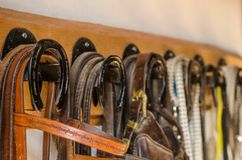Equestrian zachodni lasso, uzda, smycz Zdjęcia Royalty Free