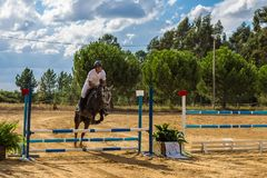 Equestrianism σε μια πορτογαλική επιφύλαξη αλόγων φύσης στοκ εικόνες με δικαίωμα ελεύθερης χρήσης