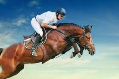 Equestrianism: de ruiter in het springen toont stock fotografie