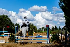 Equestrianism in een Portugees Bezwaar van het Aardpaard royalty-vrije stock foto's