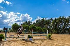 Equestrianism em uma reserva portuguesa do cavalo da natureza imagens de stock