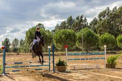 Equestrianism en una reserva portuguesa del caballo de la naturaleza fotografía de archivo libre de regalías