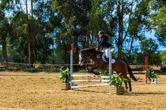 Equestrianism i en portugisisk naturhästreserv arkivfoton