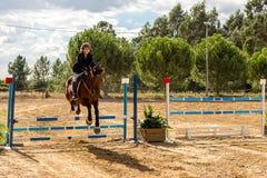 Equestrianism i en portugisisk naturhästreserv royaltyfria bilder