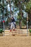 Equestrianism i en portugisisk naturhästreserv royaltyfria foton