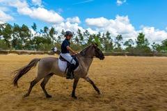 Equestrianism in a Portuguese Nature Horse Reserve. Alpiarça - Portugal, 21 October 2018 Equestrianism Contest in a Nature Horse Reserve royalty free stock photography