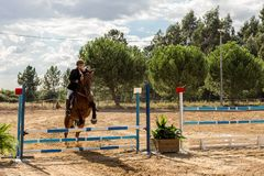 Equestrianism in a Portuguese Nature Horse Reserve royalty free stock photography