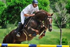 Equestrianism: Reiter in springender Show stockfotos