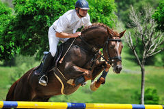 Equestrianism: rider in jumping show Stock Photos