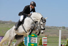 Equestrianism: rider in jumping show Stock Photography