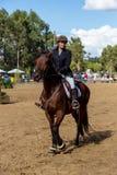 Equestrianism w Portugalskiej natura konia rezerwie obraz stock