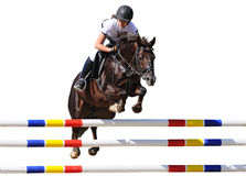 Equestrianism: Young girl in jumping show, isolated. On white background Royalty Free Stock Images
