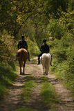 Equestrians. Two young riding ladies in a forest Stock Photography