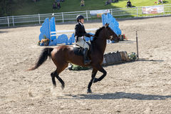 Equestriat, dressage - fille et cheval brun Photo libre de droits