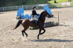 Equestriat dressyr - flicka och brunthäst Royaltyfri Foto